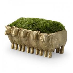 可愛いヒツジの植木鉢(またまた動物ネタ)